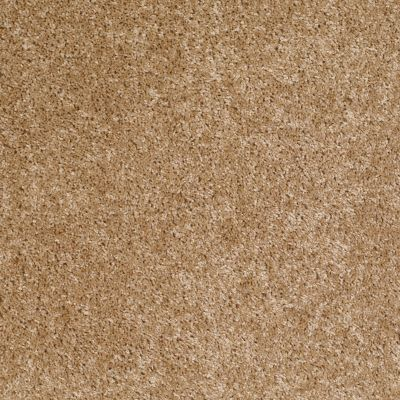 Shaw Floors Roll Special Xv463 Reed 00201_XV463