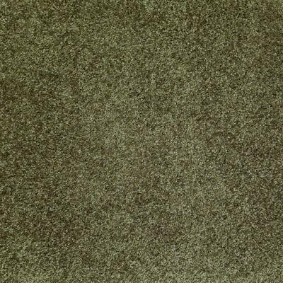 Shaw Floors Roll Special Xv463 Central Park 00301_XV463