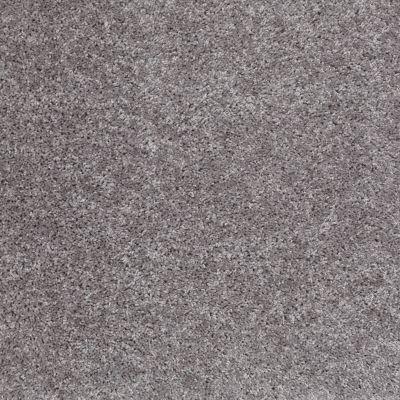 Shaw Floors Roll Special Xv463 Sterling 00500_XV463