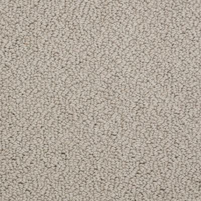 Shaw Floors Roll Special Xv480 Moonlight 00113_XV480