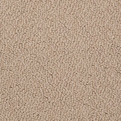 Shaw Floors Roll Special Xv480 Popcorn 00116_XV480