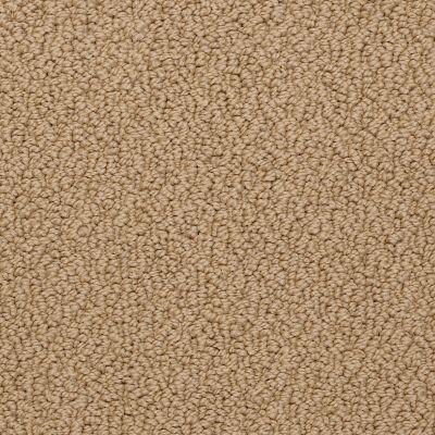 Shaw Floors Roll Special Xv480 Toast 00212_XV480