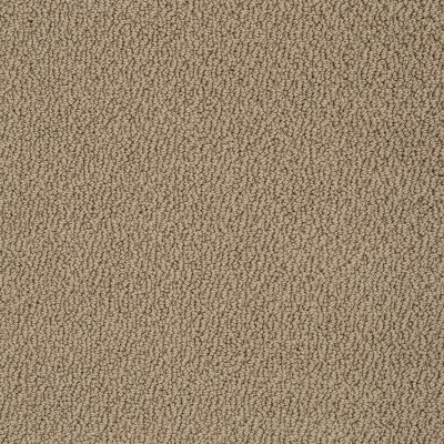 Shaw Floors Roll Special Xv480 Saffron 00757_XV480