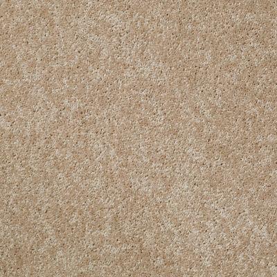 Shaw Floors Roll Special Xv540 Grain 00700_XV540