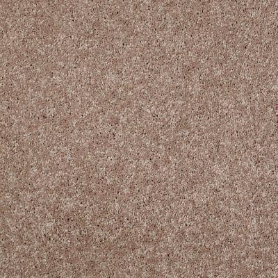 Shaw Floors Roll Special Xv540 Deer Tracks 00702_XV540
