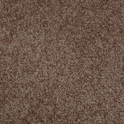 Shaw Floors Roll Special Xv540 Mocha Chip 00704_XV540