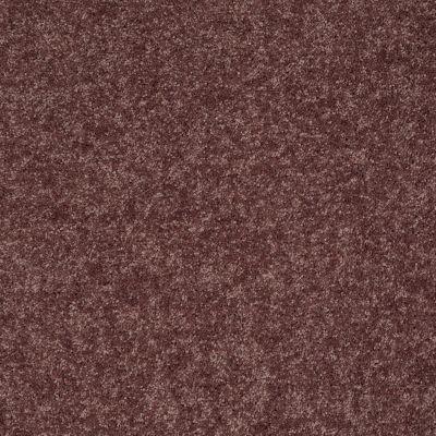 Shaw Floors Roll Special Xv540 Plum Berry 00920_XV540