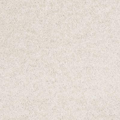 Shaw Floors Roll Special Xv543 Canvas 00100_XV543