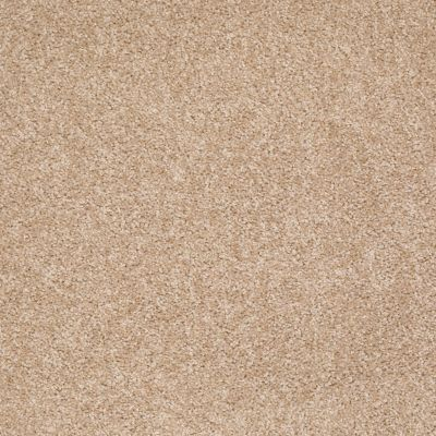 Shaw Floors Roll Special Xv543 Pale Almond 00121_XV543