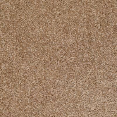 Shaw Floors Roll Special Xv543 Huntington 00700_XV543