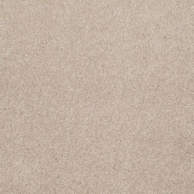 Shaw Floors Roll Special Xv694 French Canvas 00102_XV694