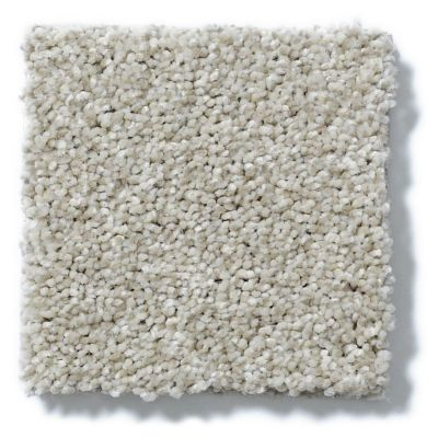 Shaw Floors Roll Special Xv795 Shell 00120_XV795
