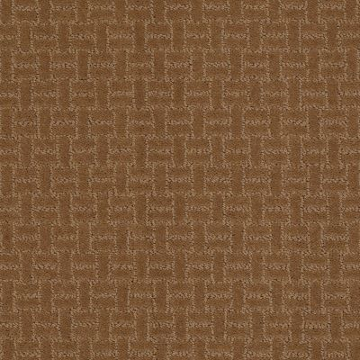 Shaw Floors Roll Special Xv805 Dark Khaki 00702_XV805