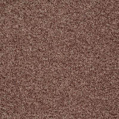 Shaw Floors Roll Special Xv811 Saddle 00703_XV811