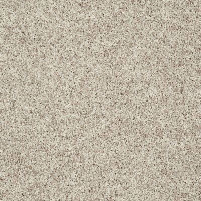 Shaw Floors Roll Special Xv812 Macadamia 00111_XV812