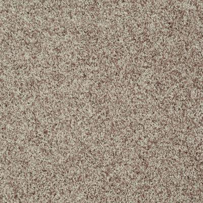 Shaw Floors Roll Special Xv812 Oatmeal 00114_XV812