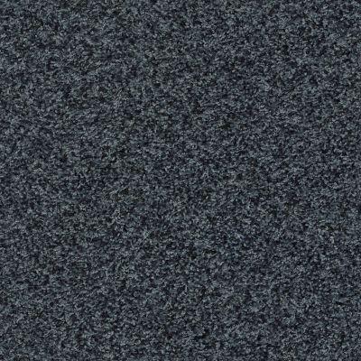 Shaw Floors Roll Special Xv812 Indigo Mood 00412_XV812