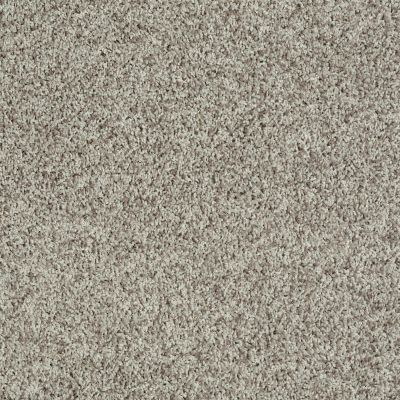 Shaw Floors Roll Special Xv812 Quartz 00511_XV812
