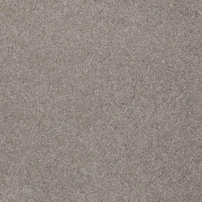 Shaw Floors Roll Special Xv813 Radiance 00500_XV813