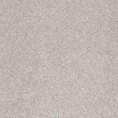Shaw Floors Roll Special Xv814 Catnip 00114_XV814