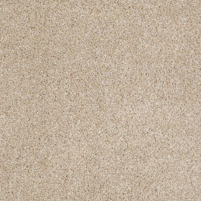 Shaw Floors Roll Special Xv814 Rich Butter 00210_XV814