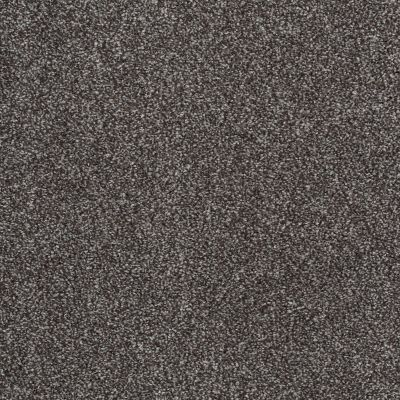 Shaw Floors Roll Special Xv814 Rich Earth 00715_XV814