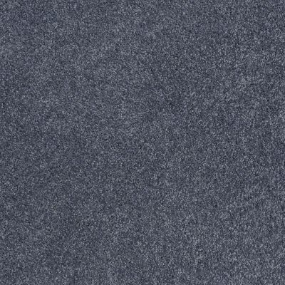 Shaw Floors Roll Special Xv815 Seacliff Heights 00300_XV815
