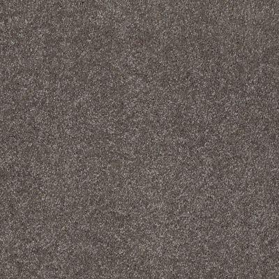 Shaw Floors Roll Special Xv815 Stone Hearth 00703_XV815