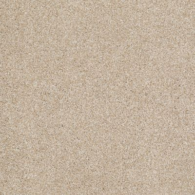 Shaw Floors Roll Special Xv816 Rich Butter 00210_XV816