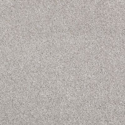 Shaw Floors Roll Special Xv816 Frosted Ice 00510_XV816