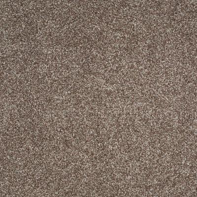 Shaw Floors Roll Special Xv816 Saddle 00718_XV816