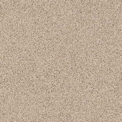 Shaw Floors Roll Special Xv854 Virtual Taupe 00109_XV854