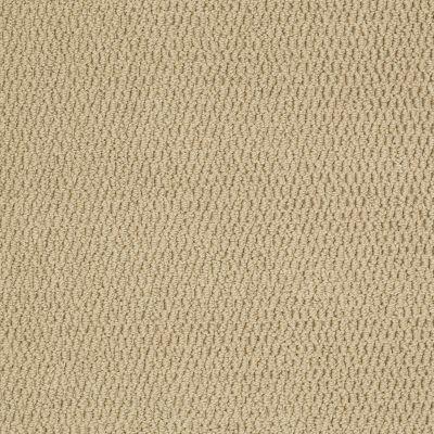 Shaw Floors Roll Special Xv861 Straw 00148_XV861