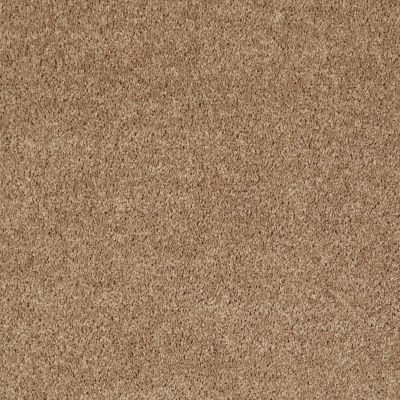 Shaw Floors Roll Special Xv863 Golden Echoes 00202_XV863