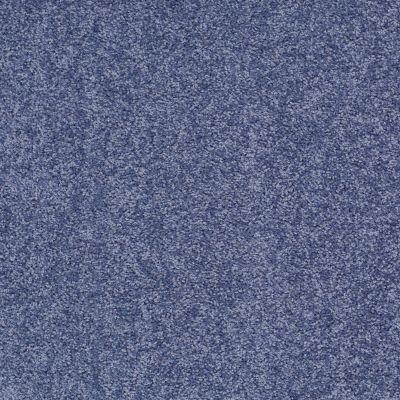 Shaw Floors Roll Special Xv863 Castaway 00400_XV863