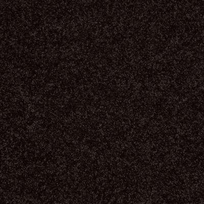 Shaw Floors Roll Special Xv863 Armour 00502_XV863