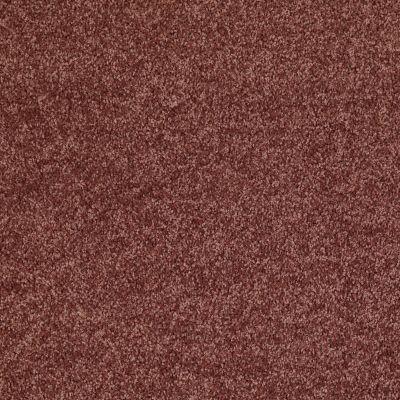 Shaw Floors Roll Special Xv863 Flower Pot 00610_XV863