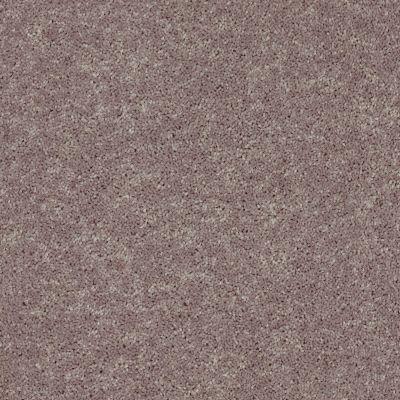 Shaw Floors Roll Special Xv863 Hearth Stone 00700_XV863