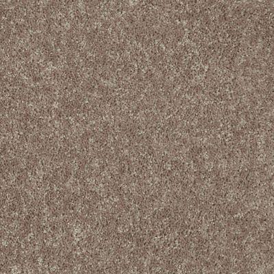 Shaw Floors Roll Special Xv863 River Slate 00720_XV863