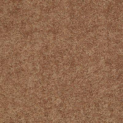 Shaw Floors Roll Special Xv863 Desert Sunrise 00721_XV863