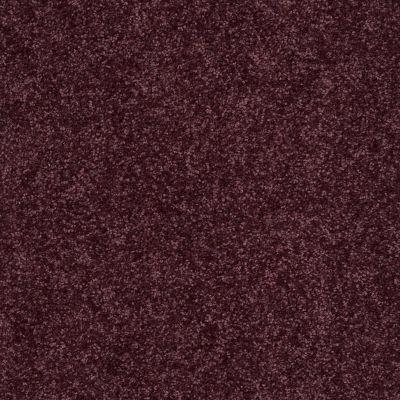 Shaw Floors Roll Special Xv863 Royal Purple 00902_XV863