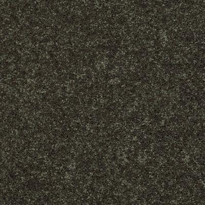 Shaw Floors Roll Special Xv864 Garden Grove 00301_XV864