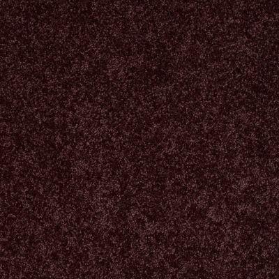 Shaw Floors Roll Special Xv864 Royal Purple 00902_XV864