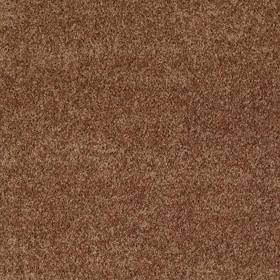 Shaw Floors Roll Special Xv865 Desert Sunrise 00721_XV865