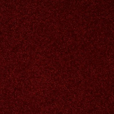 Shaw Floors Roll Special Xv866 Red Wine 00801_XV866