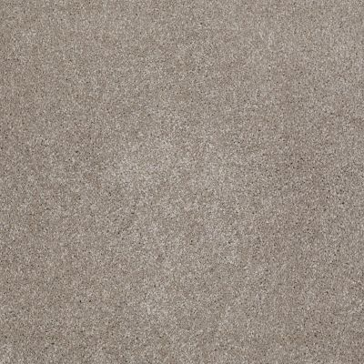 Shaw Floors Roll Special Xv930 Mocha Cream 00105_XV930