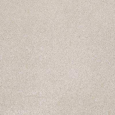 Shaw Floors Roll Special Xv930 Mist 00107_XV930