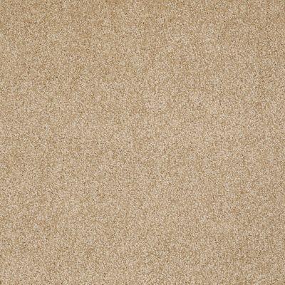 Shaw Floors Roll Special Xv930 Butternut 00210_XV930