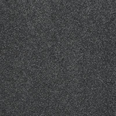 Shaw Floors Roll Special Xv930 Caribbean 00310_XV930
