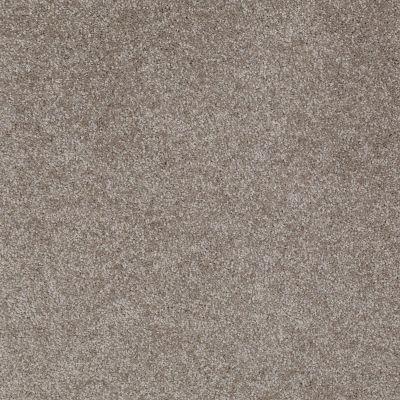 Shaw Floors Roll Special Xv930 Briar Patch 00714_XV930